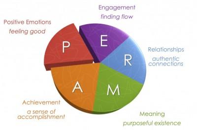 Martin Seligman's PERMA model