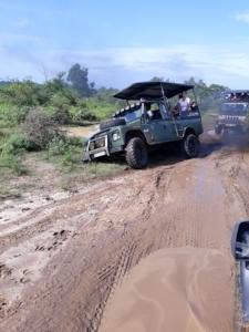 Safari jeep stuck in the mud