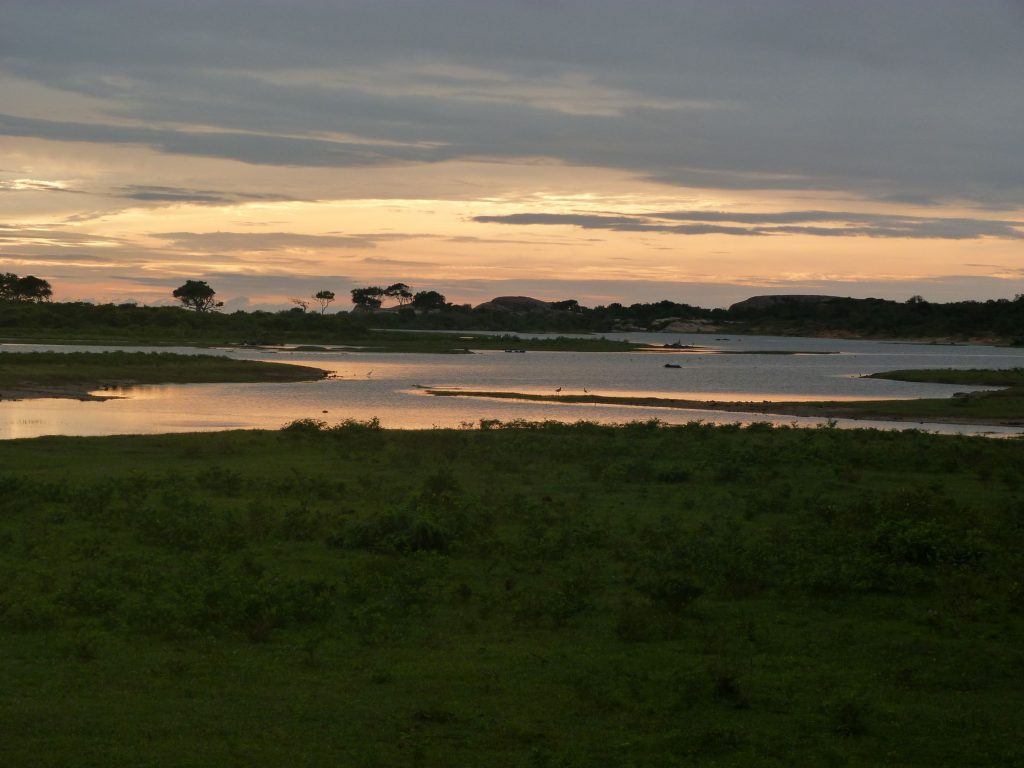Yala National Park at sunrise