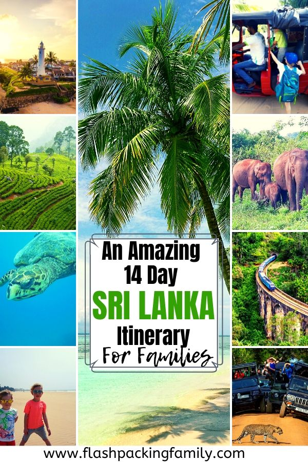 An Amazing 14 Day Sri Lanka itinerary for Families