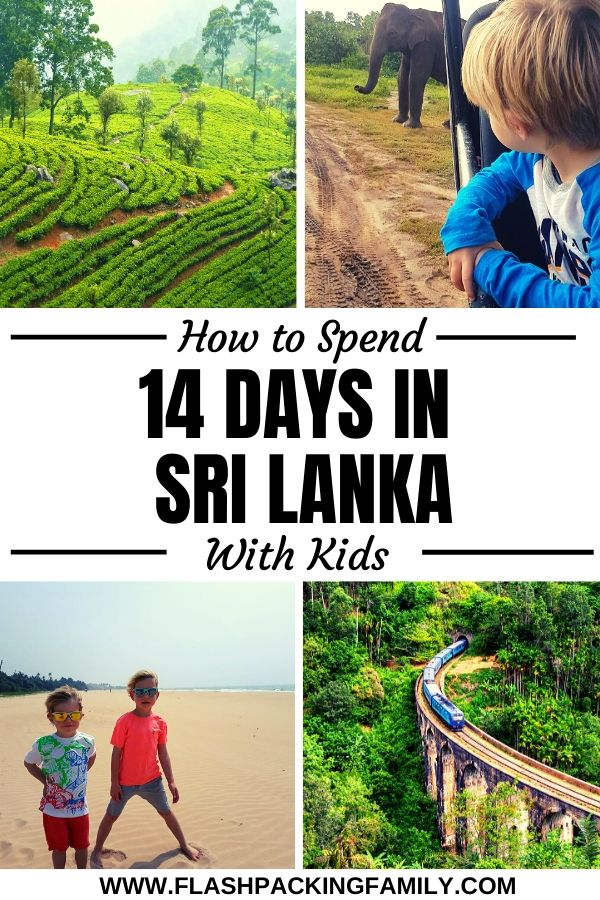 The perfect 14-day itinerary for your family-friendly Sri Lanka holidays 5