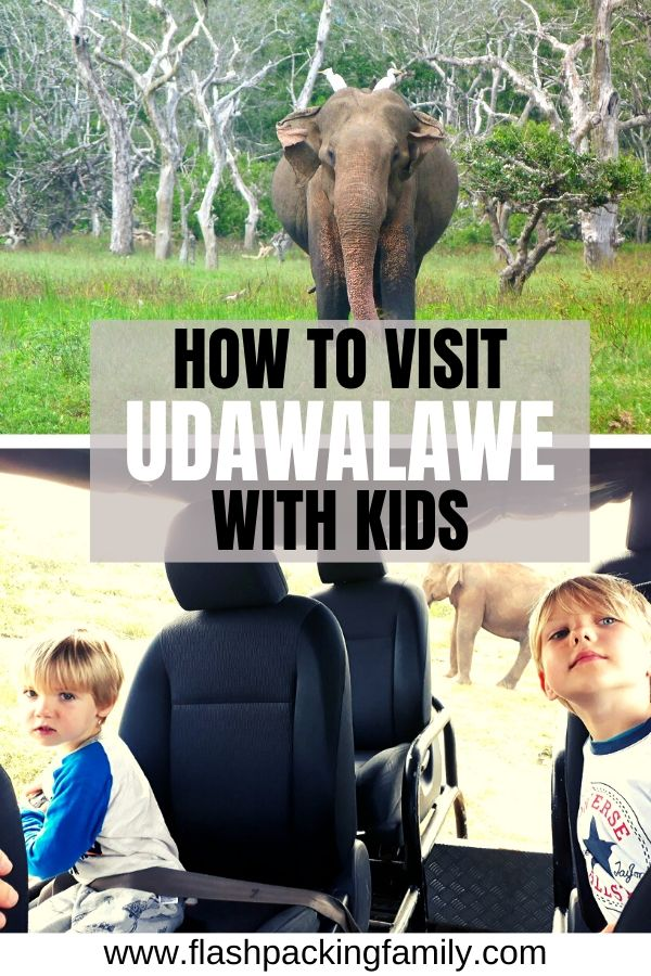 How to visit Udawalawe with kids