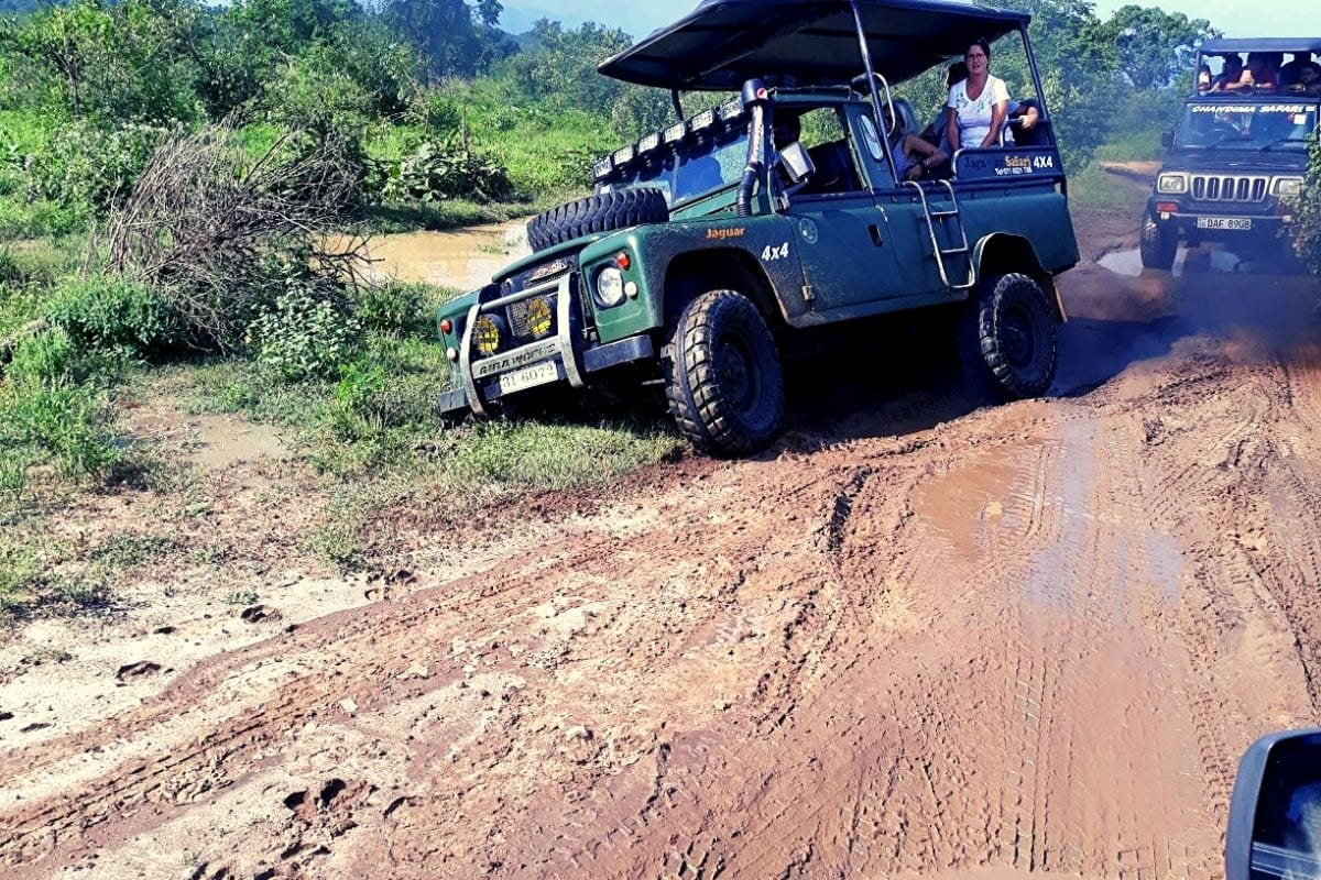Jeep stuck in the mud at Udawalawe