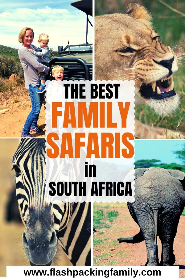 The Best Family Safaris in South Africa