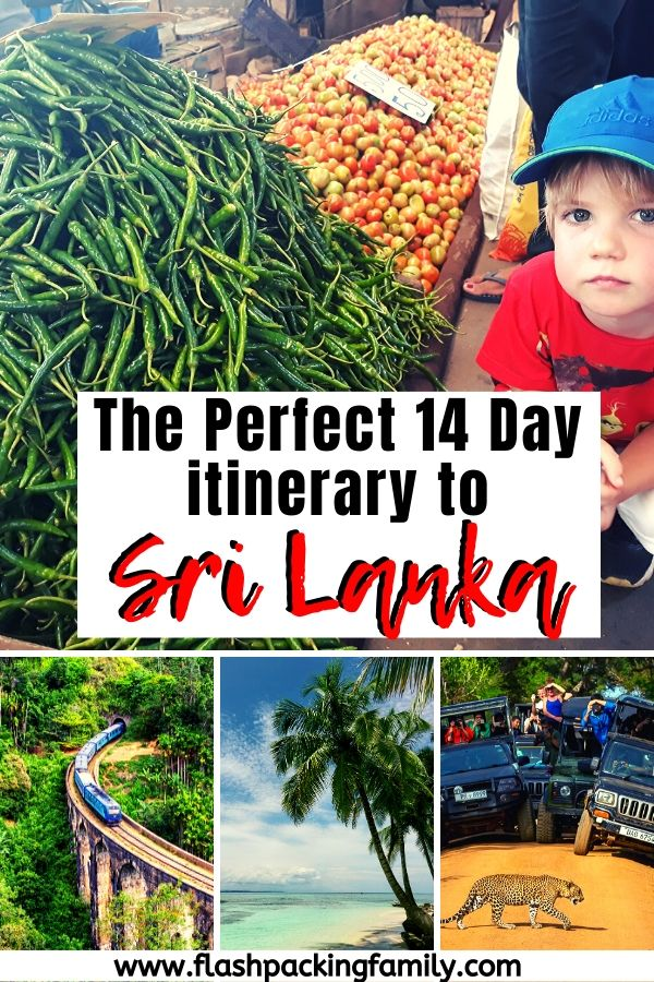 The perfect 14-day itinerary for your family-friendly Sri Lanka holidays 6