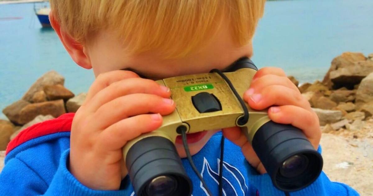 binoculars for safari