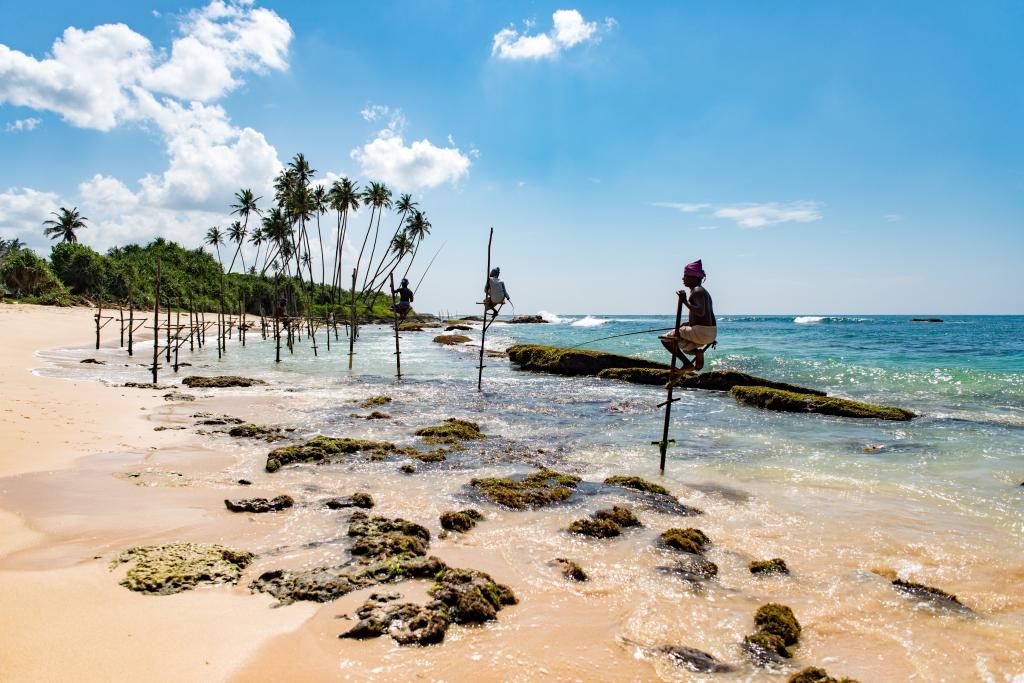 Stilt fishermen in Weligama