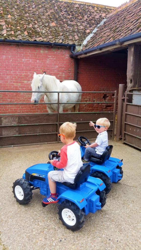 Exploring Easton Farm Park by tractor