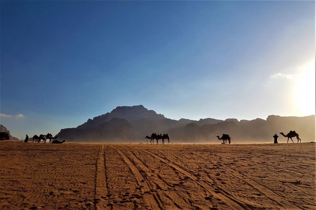 Visiting Wadi Rum with kids: sunset camel ride
