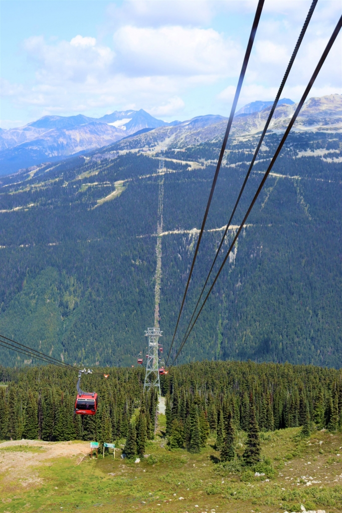 View of the Peak2Peak Gondola from Whistler Mountain