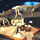 Dinosaur display at the Royal Tyrrell Museum