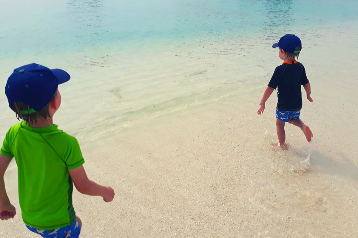Chasing baby sharks in the Maldives