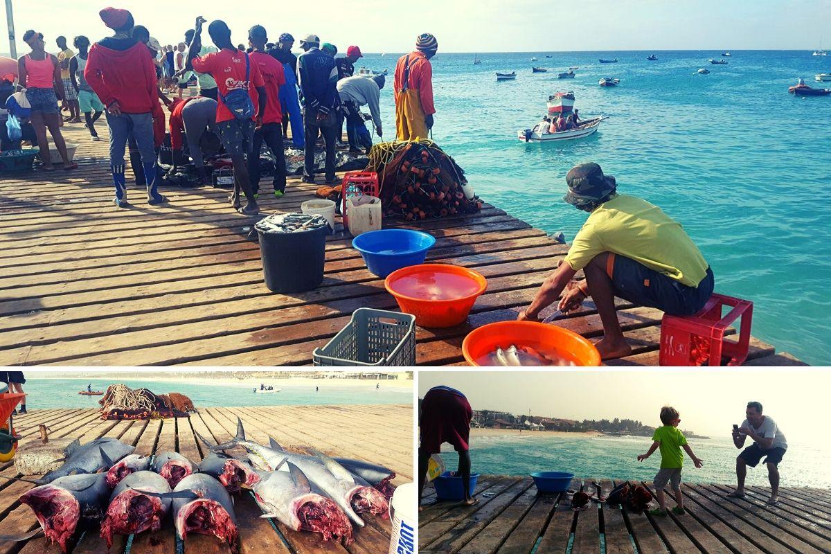 Fishermen at Santa Maria Pier in Sal Cape Verde