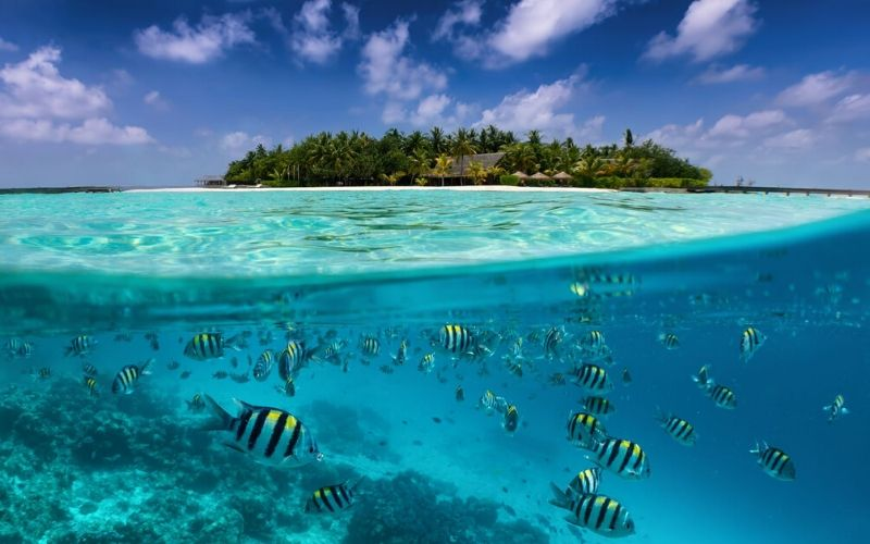 Maldives Family Travel Destination