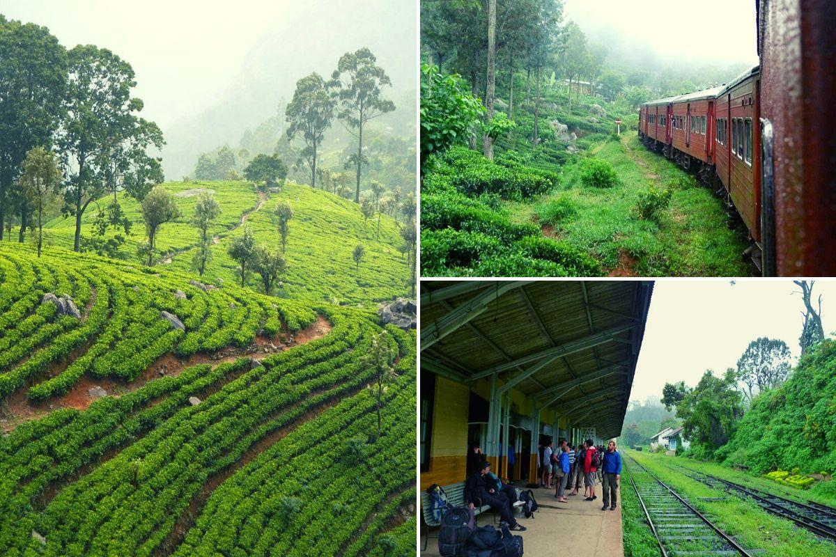 Taking the Ella to Kandy train