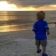 Birdwatching on Anna Maria Island beach at sunset