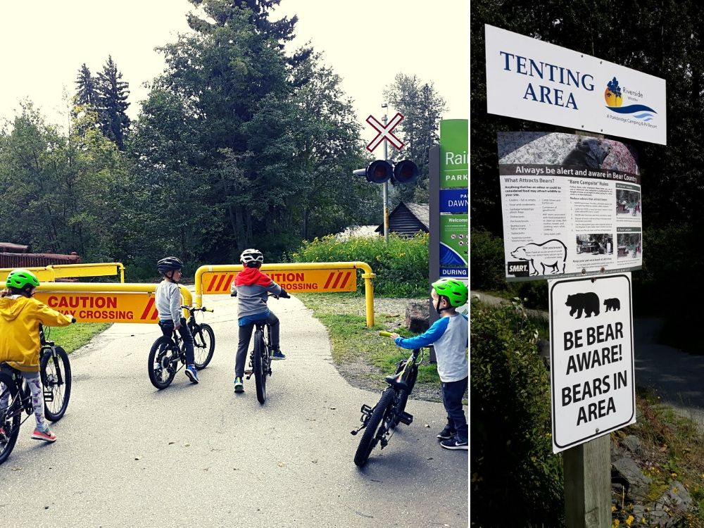 Hazards on the biking trails in Whistler