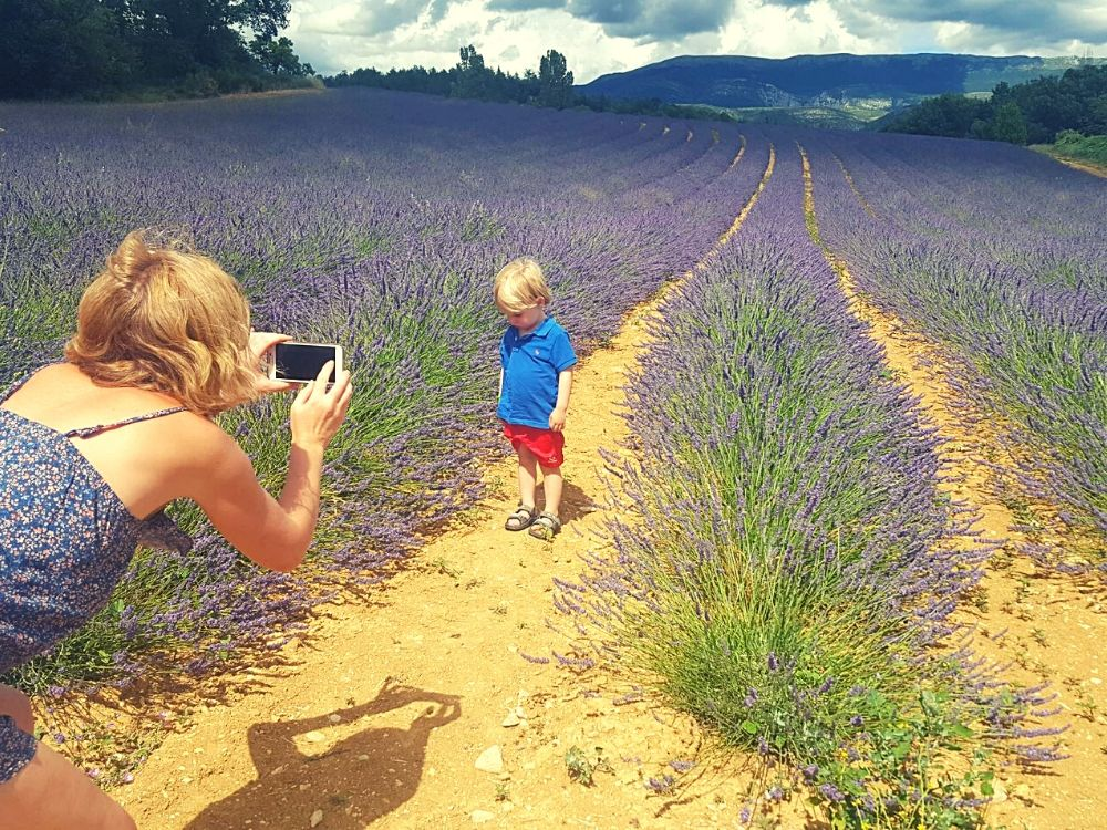 Quick lavender photo stop on the Route de Manosque near Valensole