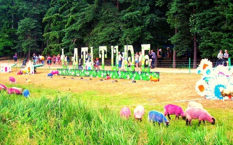 Colourful sheep at the family-friendly Latitude Festival in Suffolk.