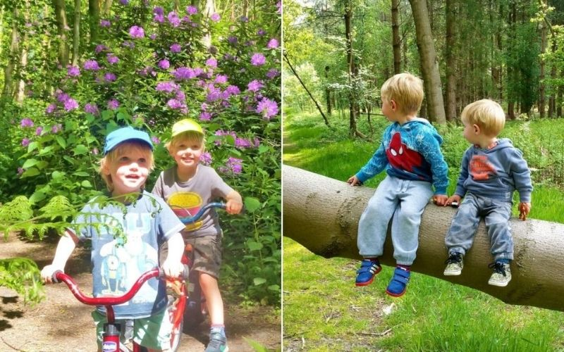 Walks and bike rides with kids in the forests in Suffolk.