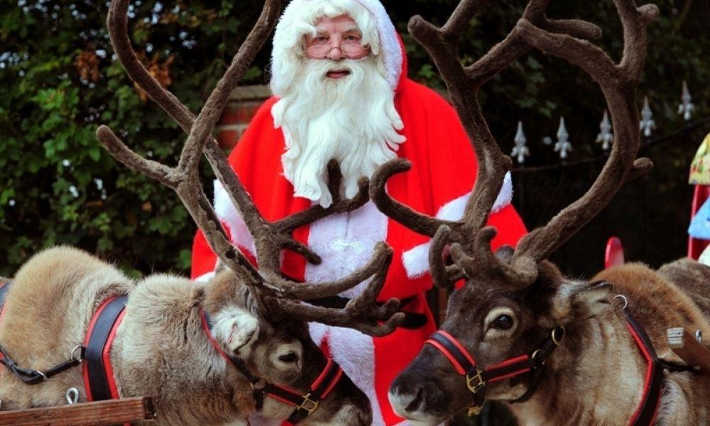 Bethersden Reindeer Centre Christmas Grotto