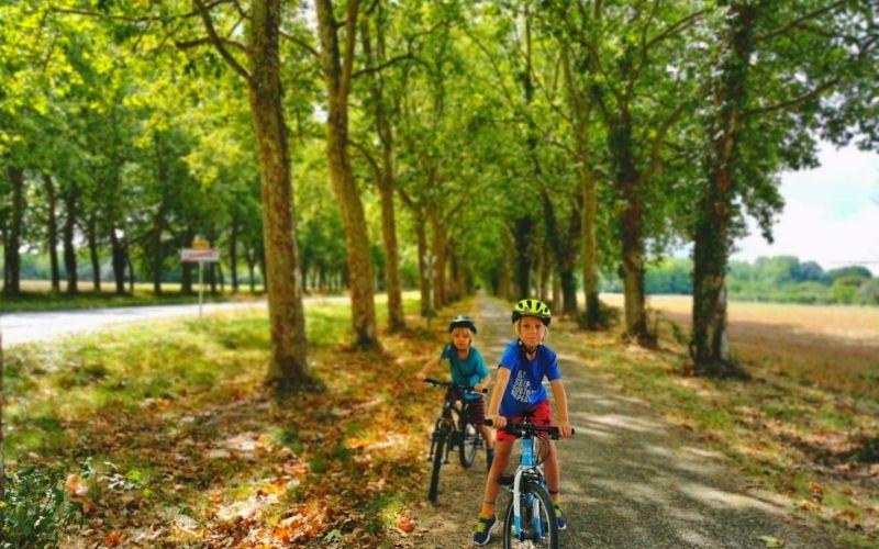 Biking in the local area