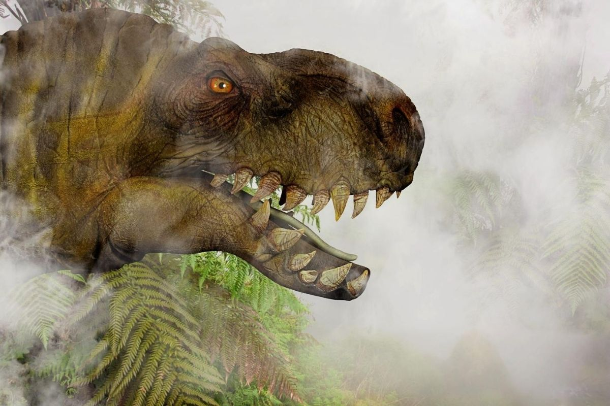 Spotting T Rex at dinosaur parks in the UK