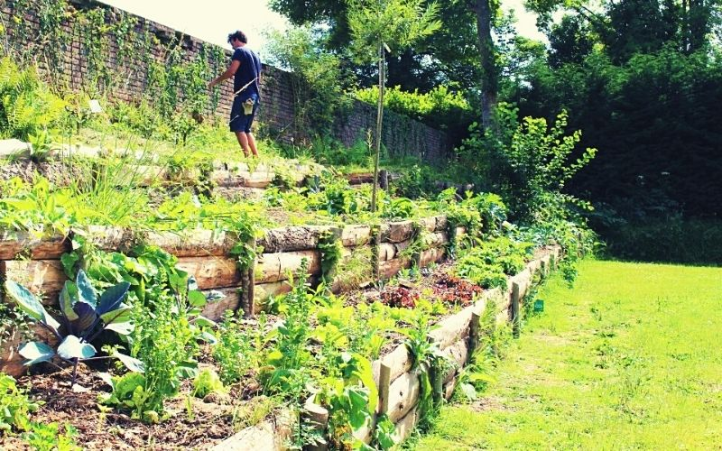 The accessible-to-all vegetable garden at Castel la Brévedent