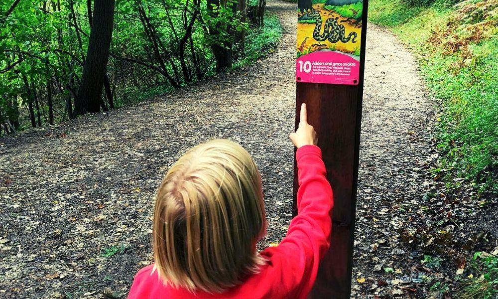 Gruffalo trail marker points
