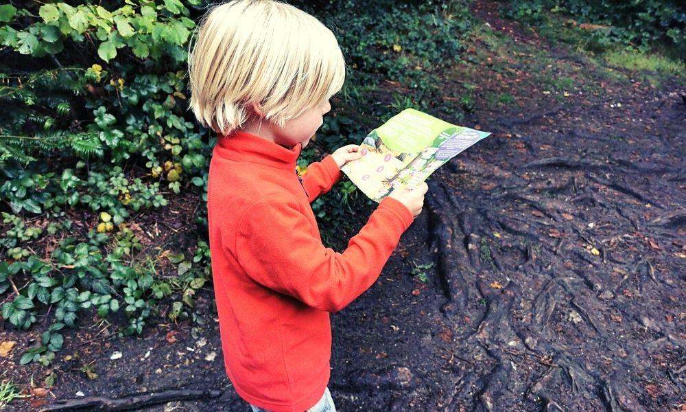 Map reading on the Gruffalo orienteering trail