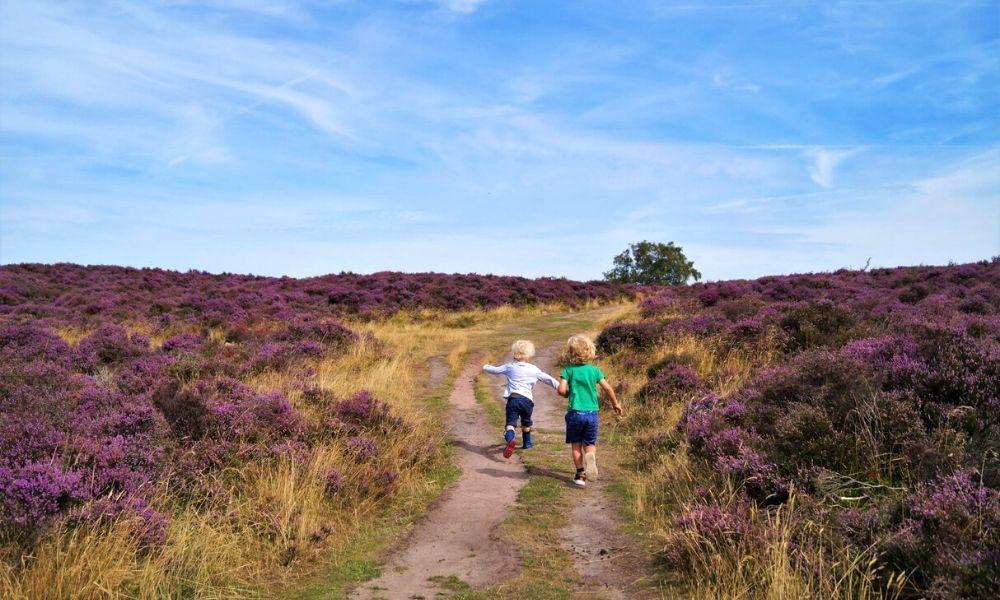 Stanton Moor walk in the Peak District