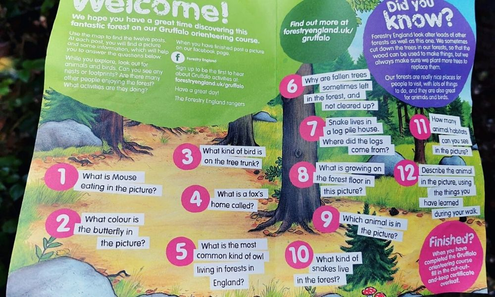 The 12 Gruffalo Trail questions at Wendover Woods