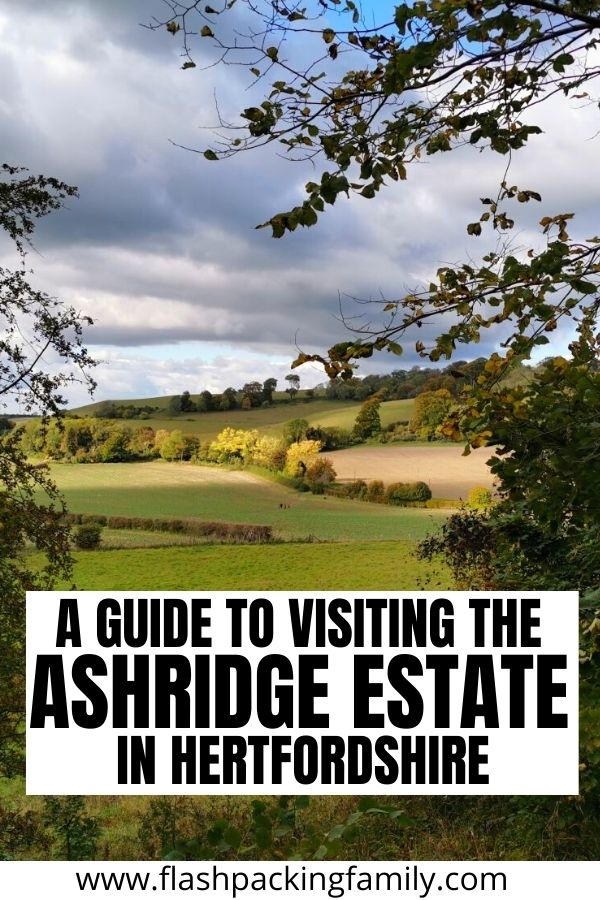 A Guide to visiting the Ashridge Estate in Hertfordshire