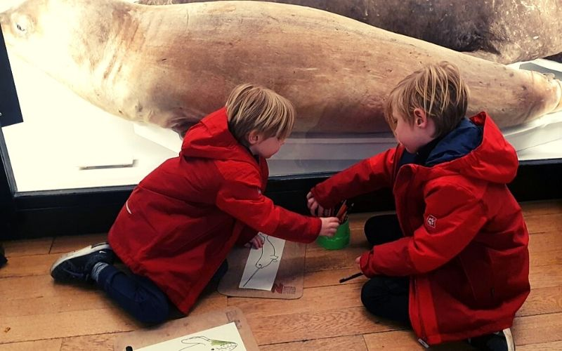 Colouring activities for the kids at the Tring Natural History Museum