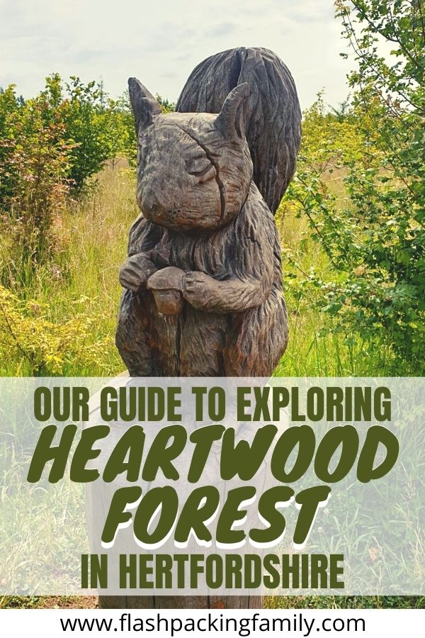 Our Guide To Exploring Heartwood Forest in Hertfordshire