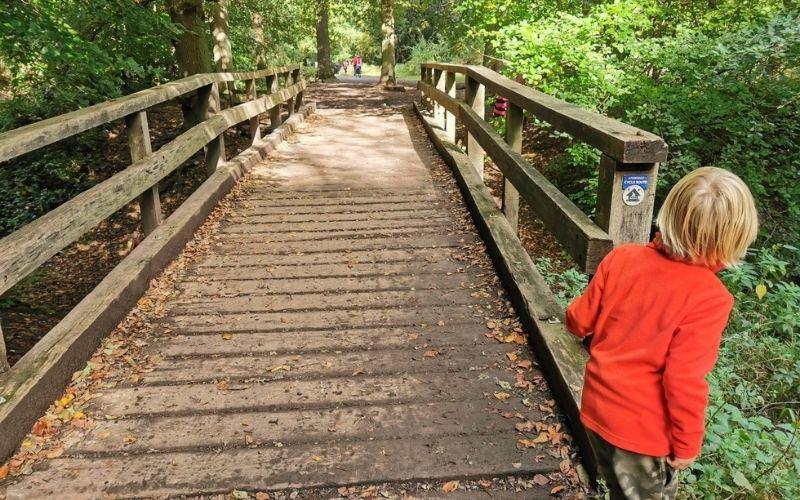 Troll Bridge at Ashridge Estate