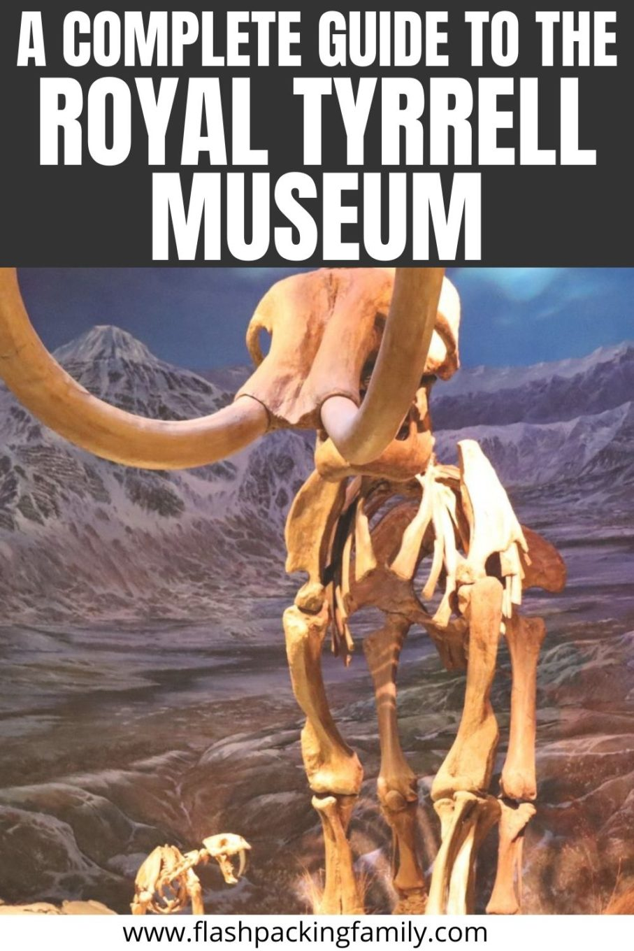 A Complete Guide to the Royal Tyrrell Museum in Canada
