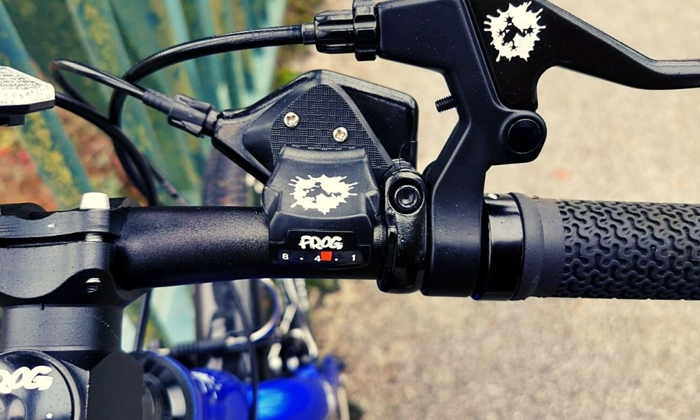Frog Bikes gears and brakes