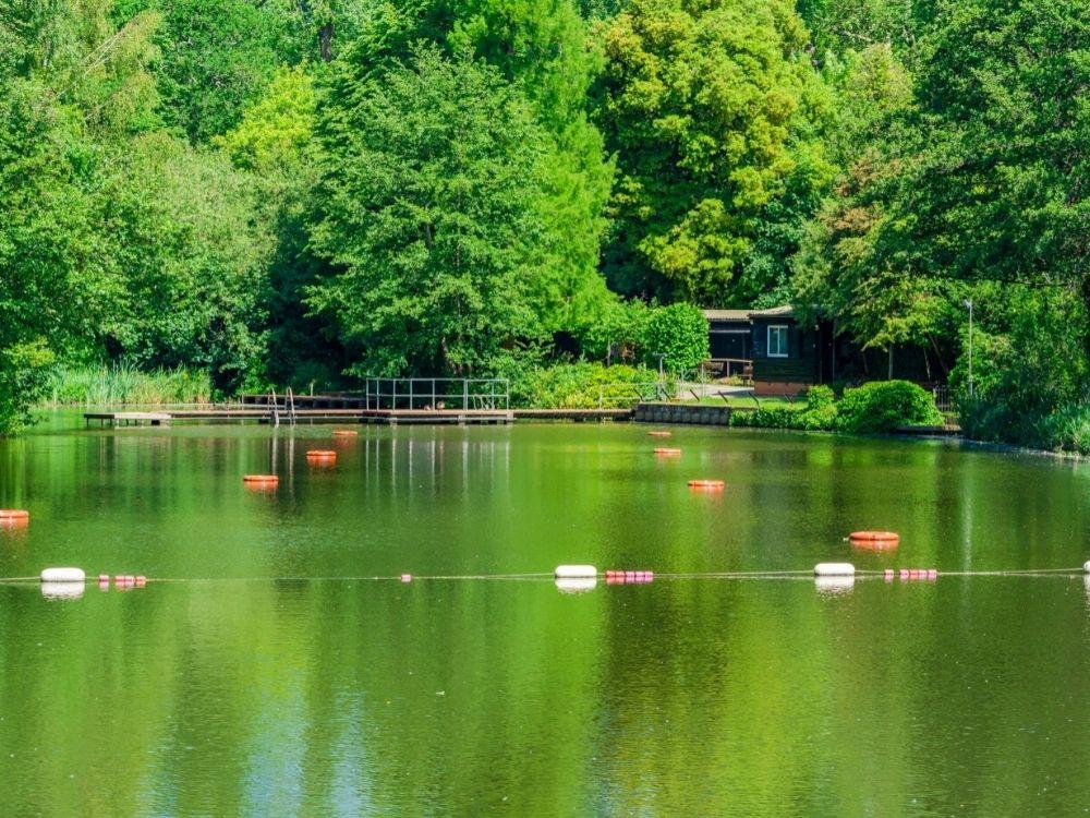 Hampstead Heath Ponds.