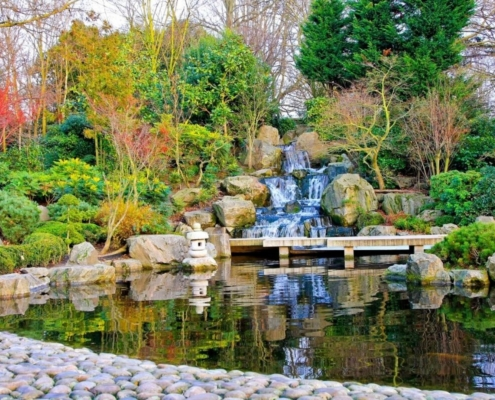 Kyoto Garden in Holland Park.
