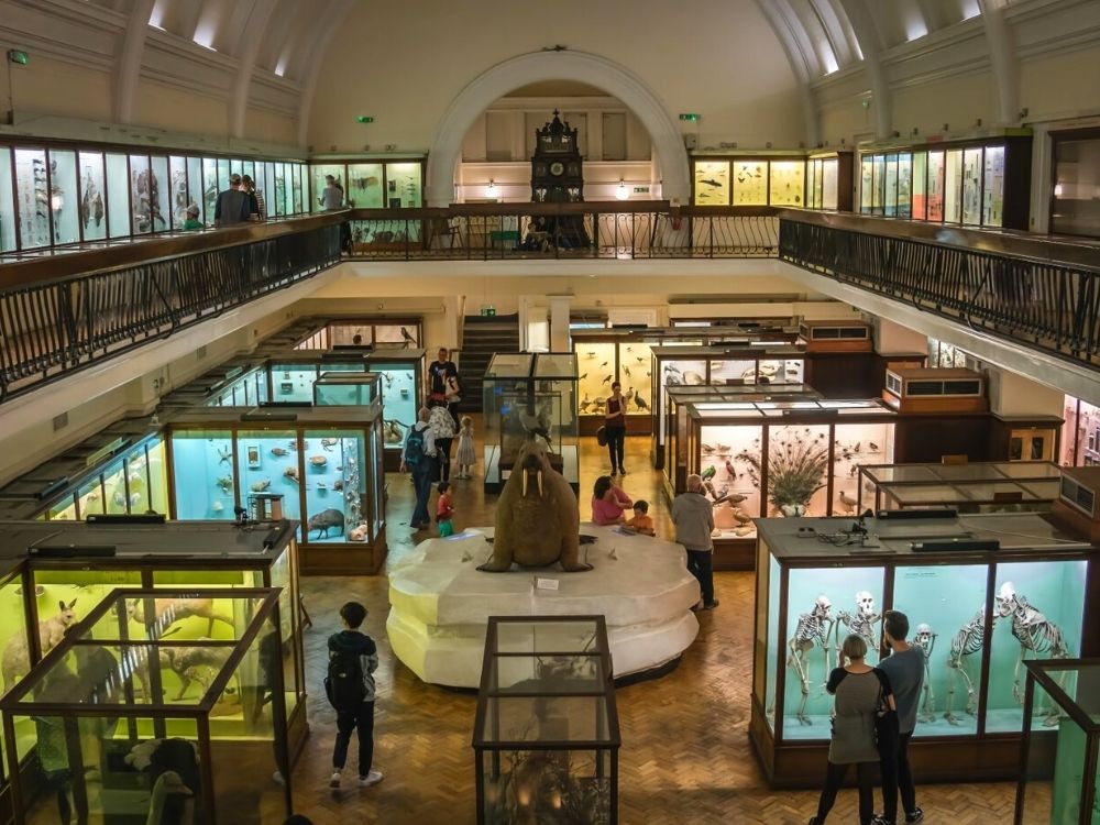 The Horniman Museum in Forest Hill.