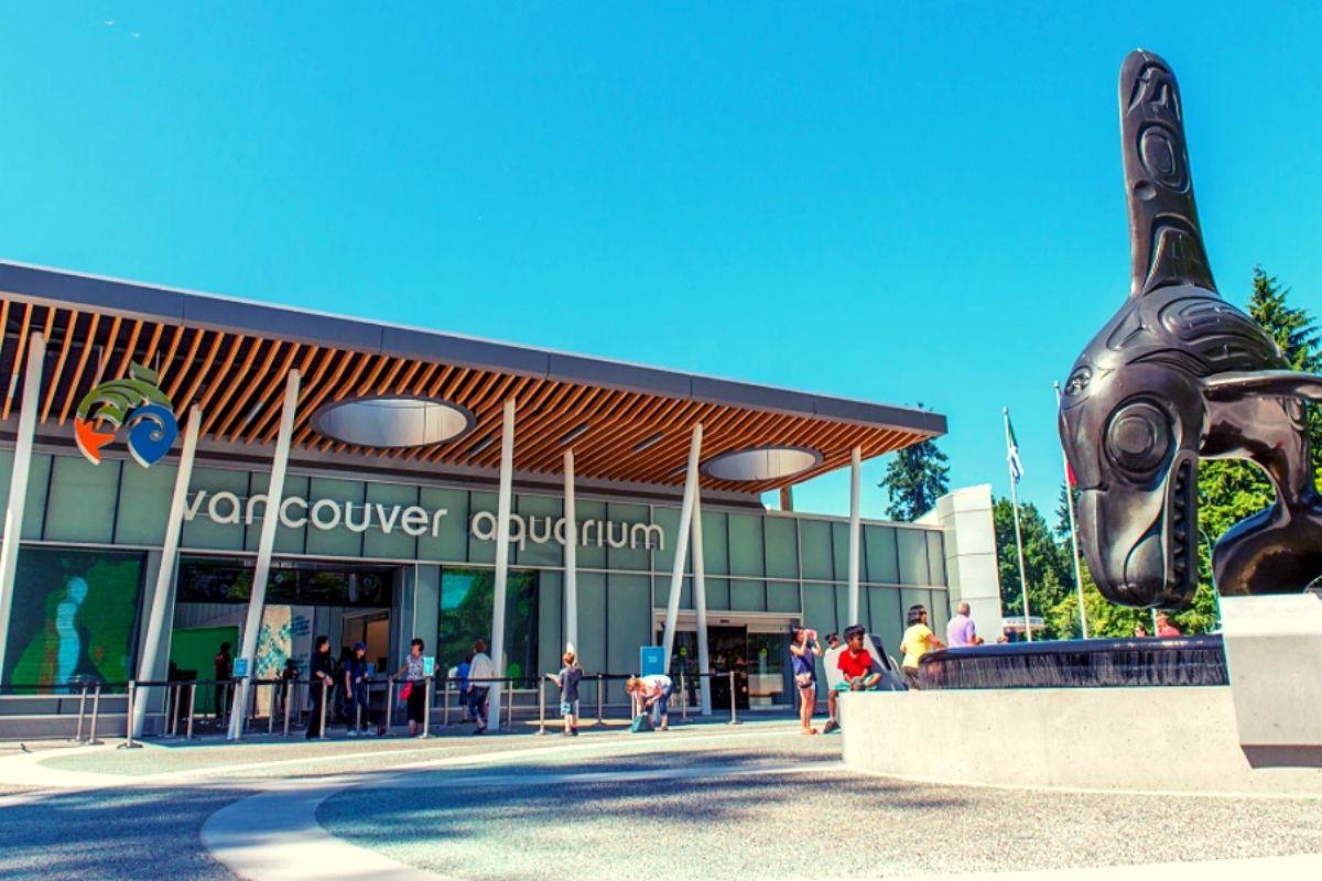 Vancouver Aquarium in Stanley Park.