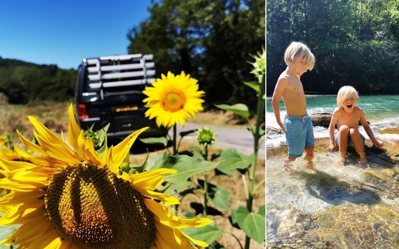 Campervan parked on side of road by sunflowers and kids paddling.