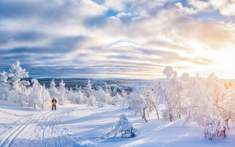 Cross country skiing in Finland.