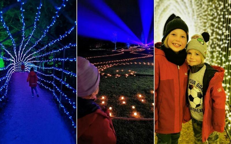 Enjoying the Blenheim Palace Christmas light displays.