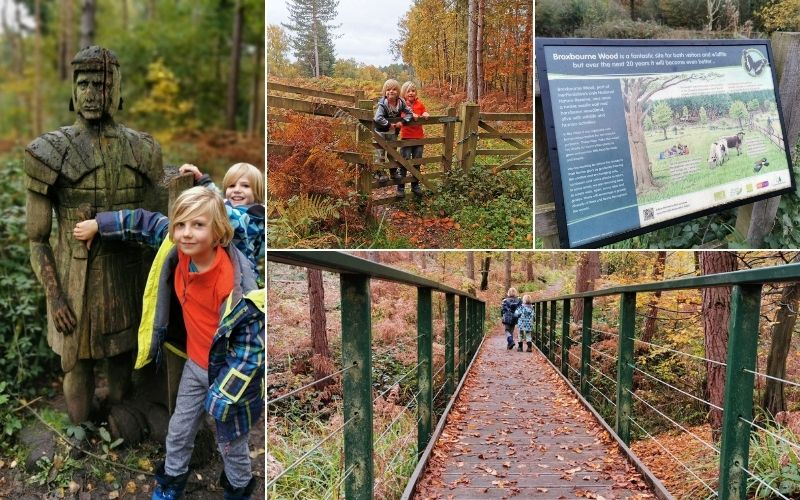 Exploring Broxbourne Woods in Hertfordshire.