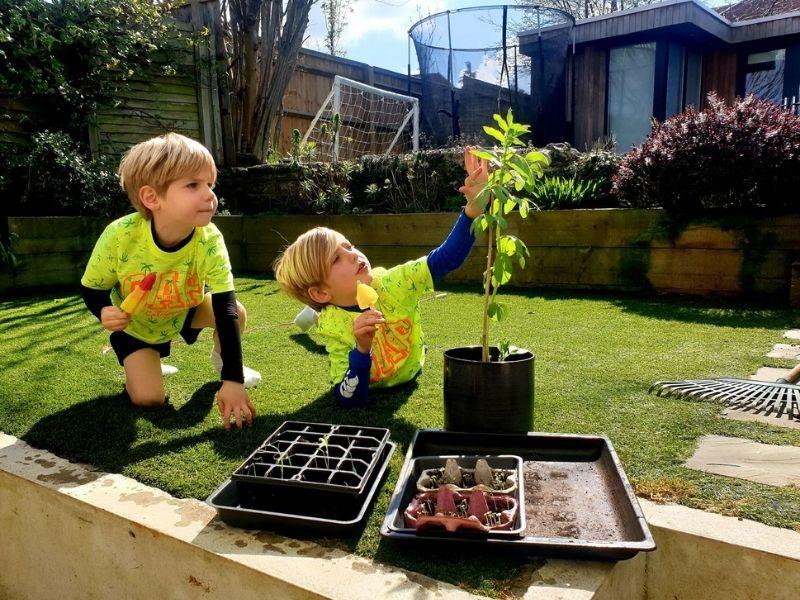 Grow seedlings in egg boxes.