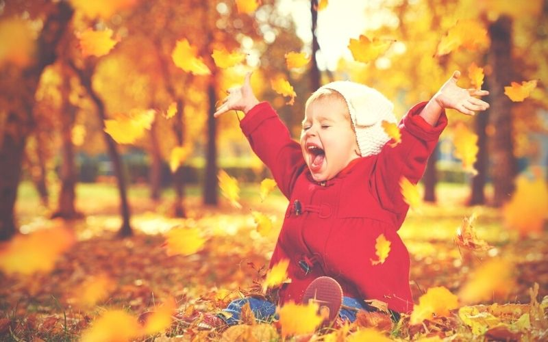 Toddler having fun outdoors in the autumn leaves.