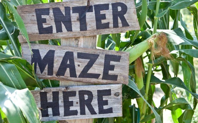 Enter maze here sign.