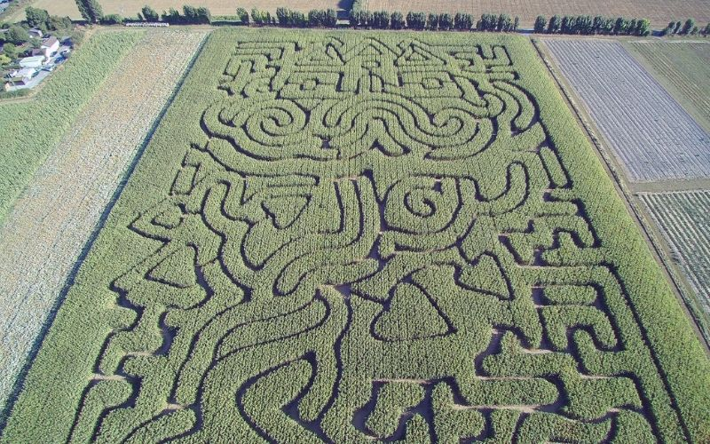 Stanhill Farm Maize Maze aerial view